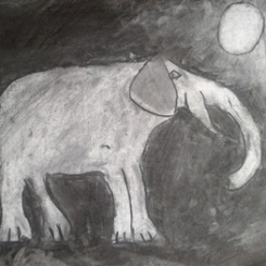 nachtelijkeolifantt.png