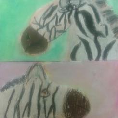 zebra_2.png